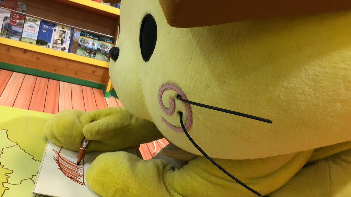 島根県観光キャラクターしまねっこ【公式】's photo on #靴の記念日