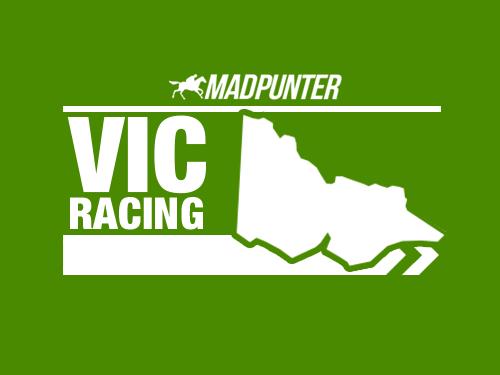 madpunter.com.au's photo on Race 3