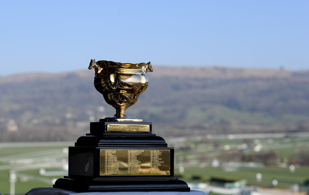 bwin's photo on Gold Cup Day