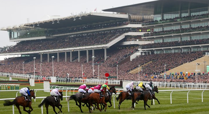 Cheltenham's photo on Gold Cup Day