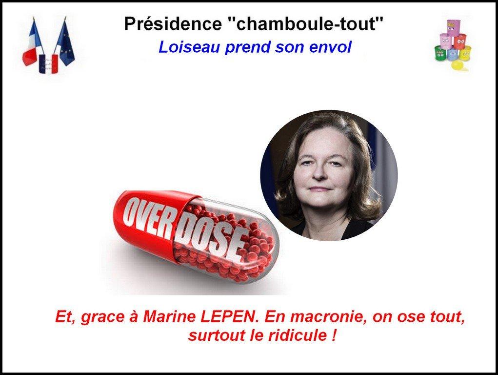 Macronite2017 💯's photo on #Loiseau
