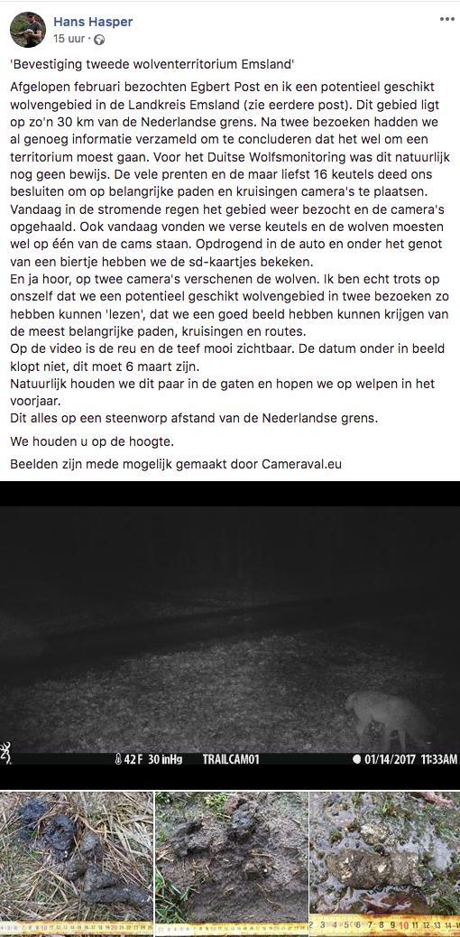 Hans Hasper's photo on De Ligt