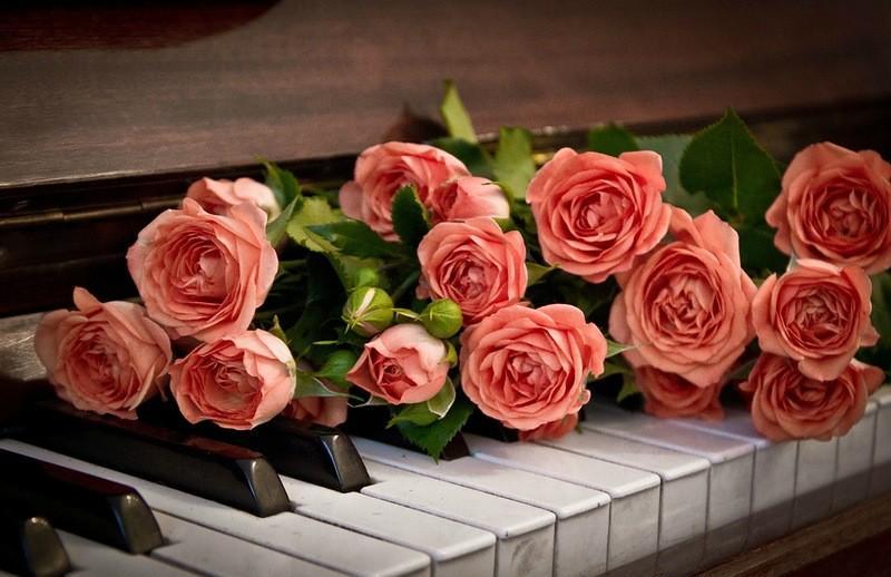 Открытки с днем рождения музыкальные с розами, картинки при простуде