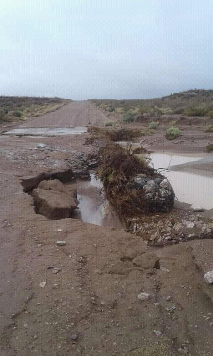 #ATENCIÓN se solicita evitar transitar Ruta Prov N° 4 Hay un corte en badén tramo emp. RPN8 Telsen Se descalzó a la altura de Bajo la Suerte, a 90 km de #Madryn y a 15 km de Sierra Chata. Info @AVPchubutok