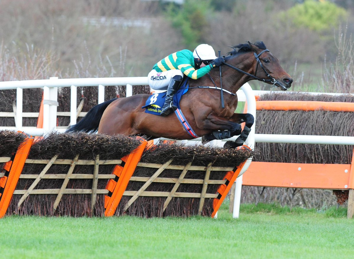 At The Races's photo on Triumph Hurdle