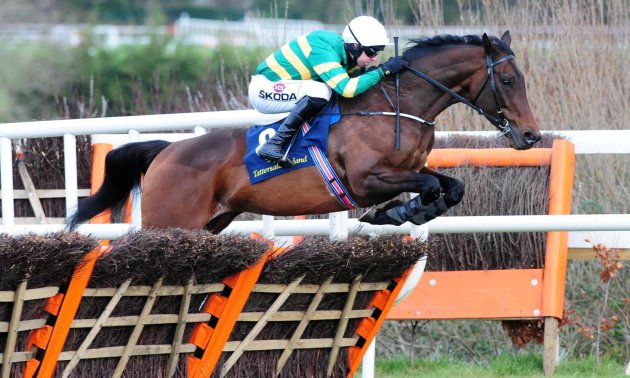Cheltenham Gold Cup Day Tips at timeform.com's photo on Triumph Hurdle