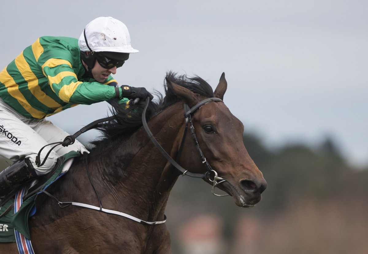 My Racing Tips's photo on RIP Sir Erec