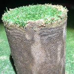 Image for the Tweet beginning: Another Beautiful day to #dryject