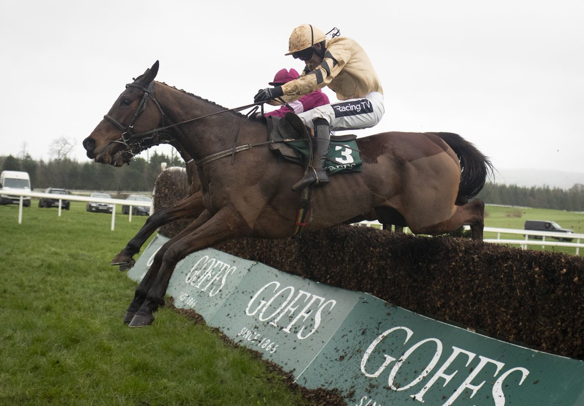 My Racing Tips's photo on Willie Mullins