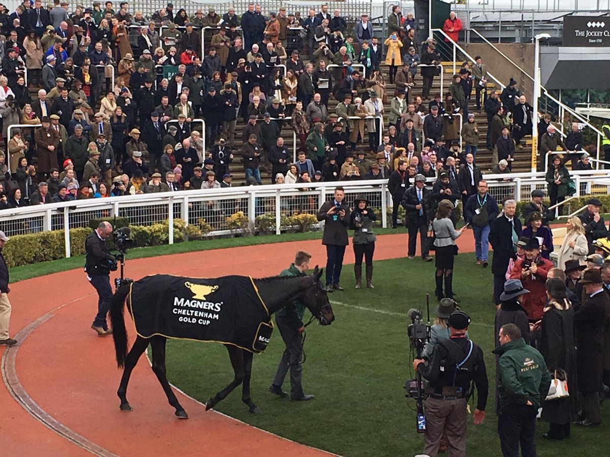 Arthey Associates's photo on #CheltenhamGoldCup