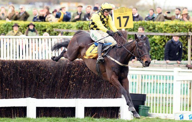Horse & Hound's photo on Willie Mullins