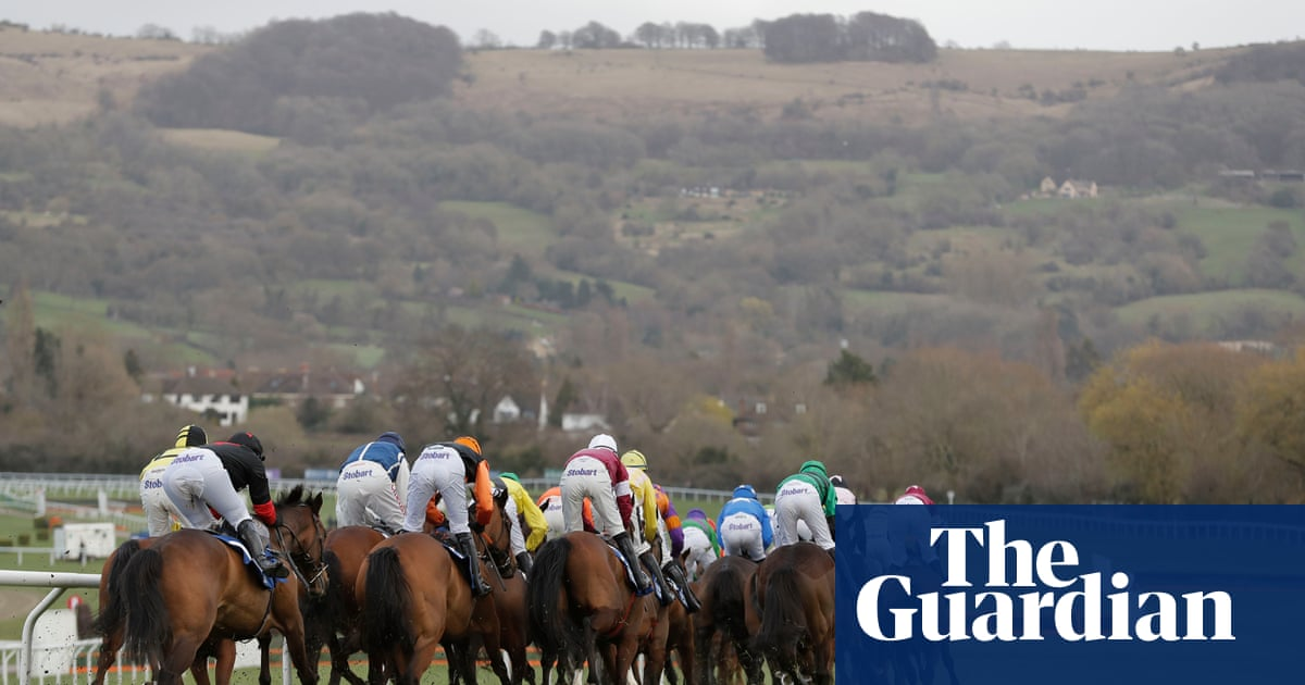 Horse Racing News's photo on Willie Mullins