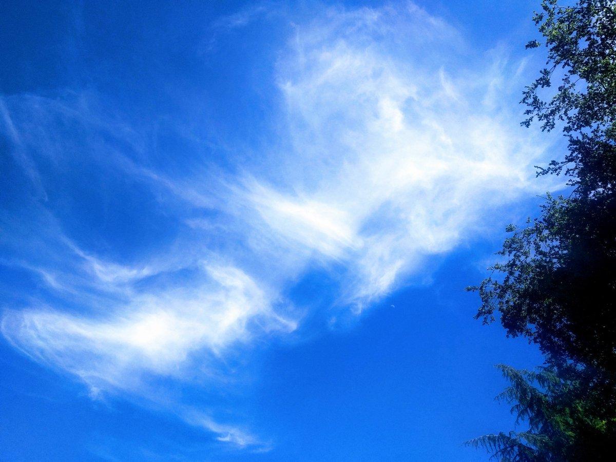 I love a good sky don't you? #mackandfaulkner, #sebastopol, #sebastopolrealestate, #sonomacounty, #luxuryrealestate, #realestate, #stopandlook