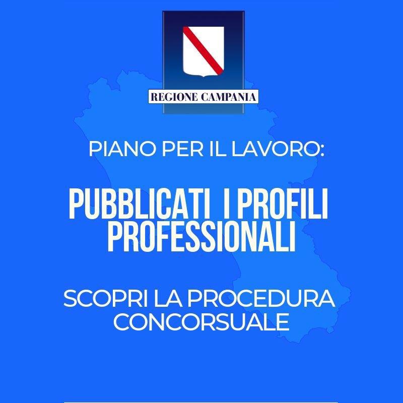 PianoLavoro Regione Campania on line manuale operativo ef5d21603d2