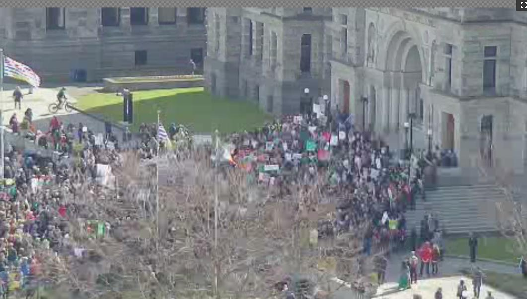 Karina O'Sullivan's photo on #studentstrike4climate
