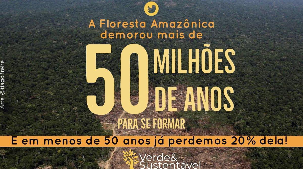 Verde&Sustentável's photo on Fonte
