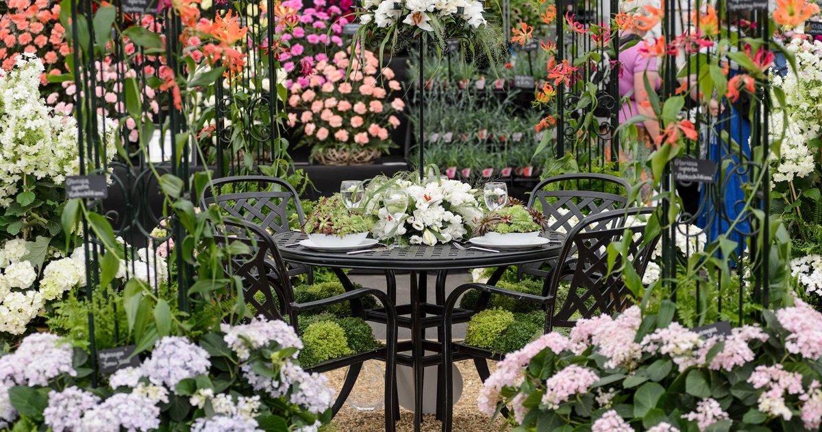 Gardeners World Live's photo on #GardenersWorld
