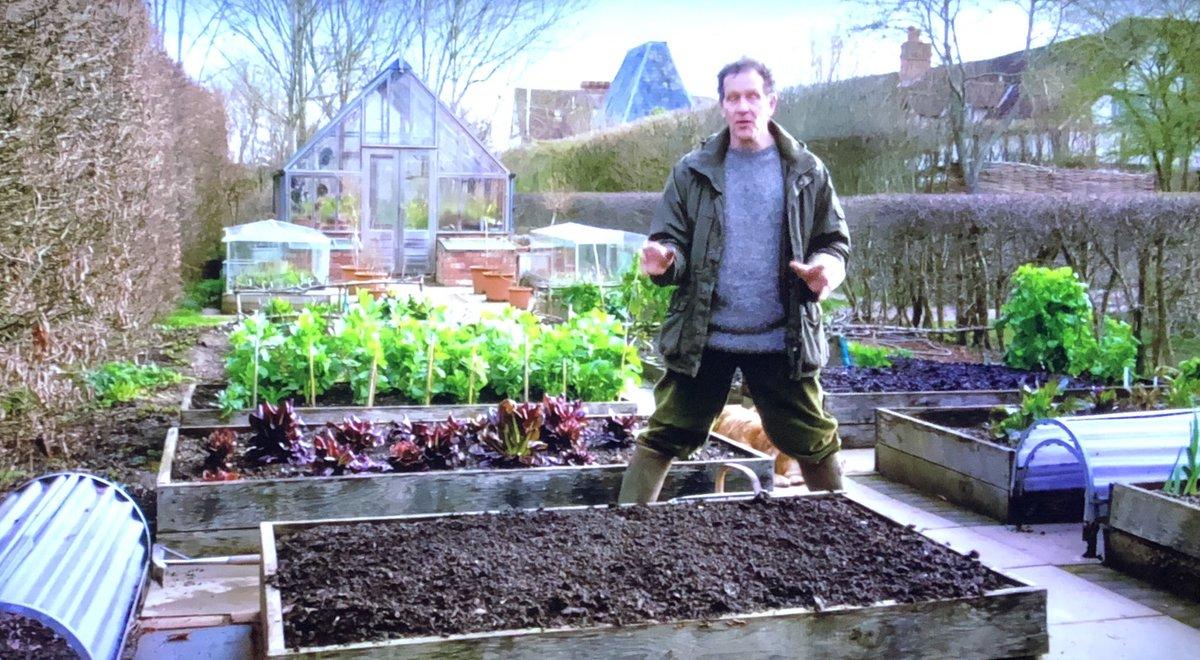 Stu's photo on #GardenersWorld