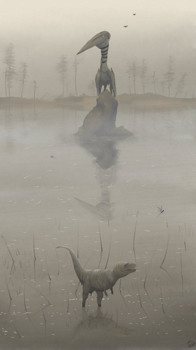 """""""The Stork"""" A Hatzegopteryx stalks a juvenile Tyrannosaurus from a rock on a lake. The Tyrannosaur is obviously quite frightened by this, and tries running through the muck of the swamp to escape.  For @jimmadseni &amp; @Child_Of_Lions  #Paleoart #SciArt #FossilFriday #Paleontology<br>http://pic.twitter.com/pwEDV2yOYP"""
