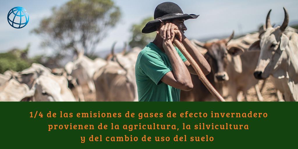 Banco Mundial | América Latina y el Caribe's photo on #cambioclimático