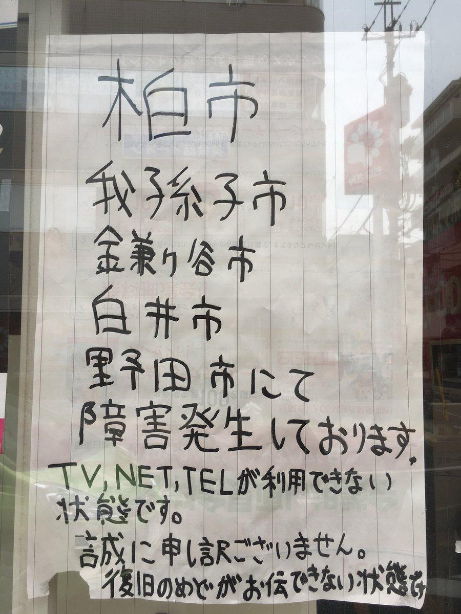 なお(∧トンガリ・ワンリキー)'s photo on J:COM
