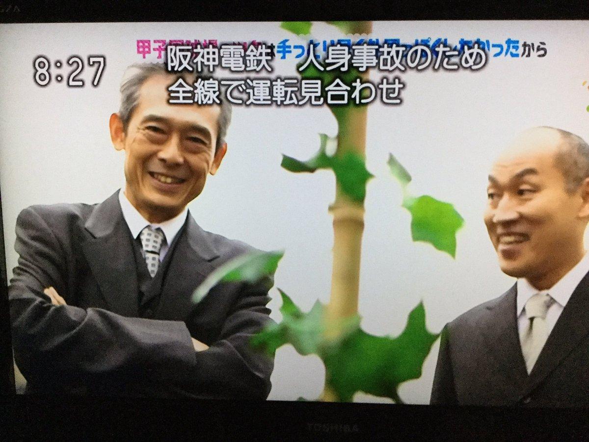 なぎ@浪速の橙魂/単車道初心者's photo on 甲子園球場