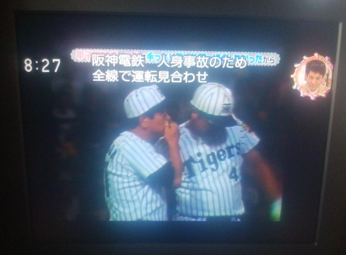 Paper's photo on 甲子園球場