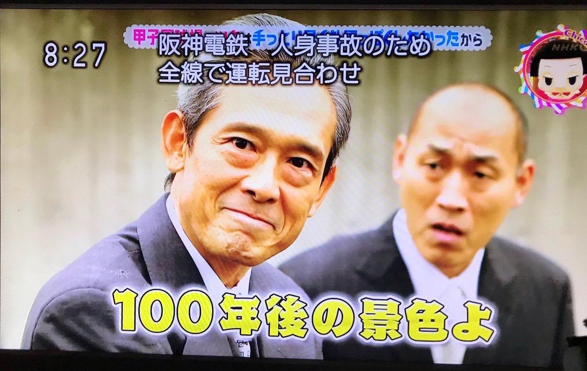 大仏's photo on 甲子園球場