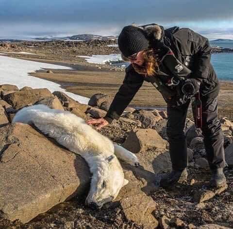 Marsh's photo on #cambioclimático