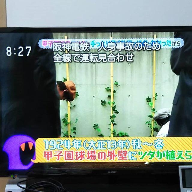 taka's photo on 阪神電鉄