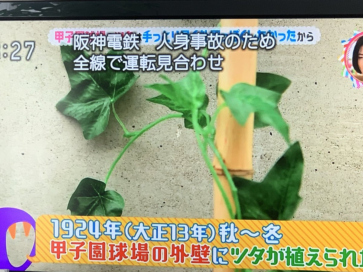 みょうこう's photo on 阪神電鉄