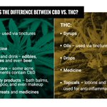 Image for the Tweet beginning: #Know The Difference Between #Hemp
