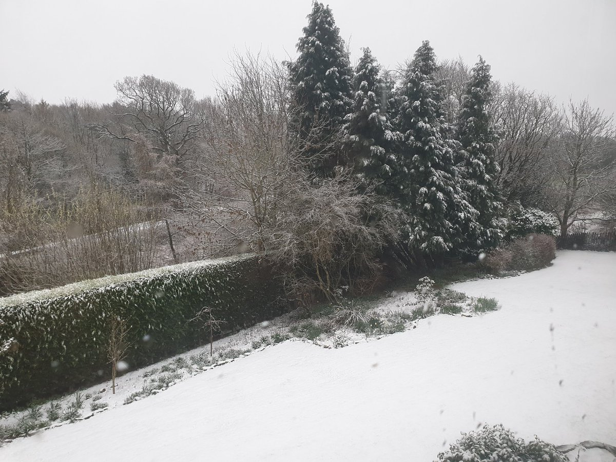 Wasn&#39;t expecting that !    #SaturdayMorning #Snowmageddon  <br>http://pic.twitter.com/IFsAgby49b