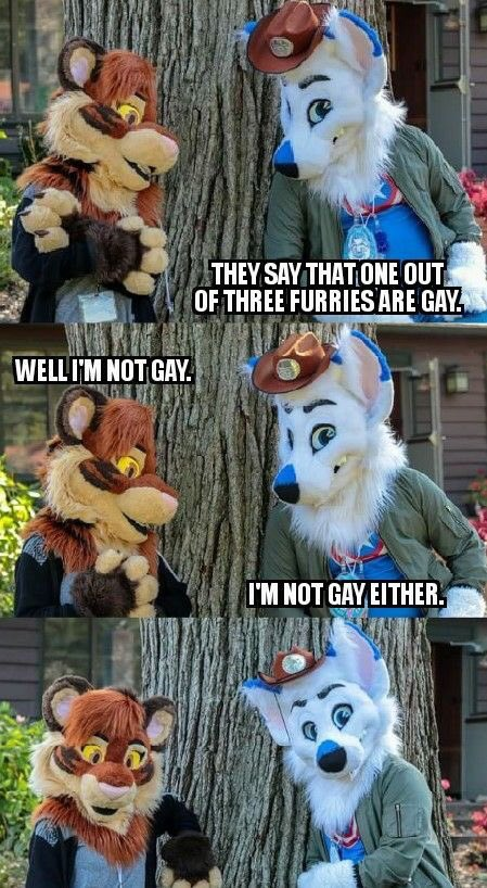 As if it was only 1/3... #furryfandom #FursuitFriday #furries<br>http://pic.twitter.com/N7btF1Q07A