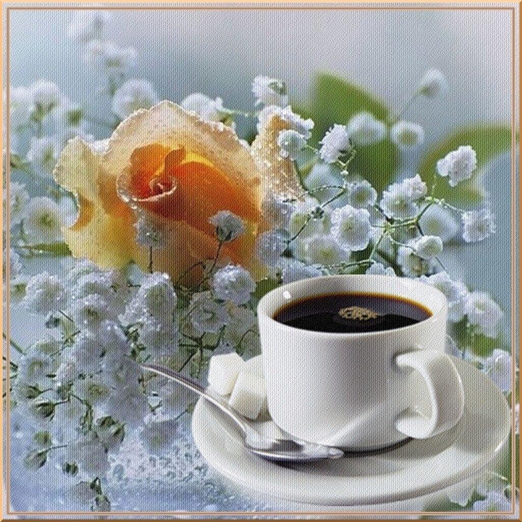 Праздником, замечательного утра и прекрасного настроения красивые картинки