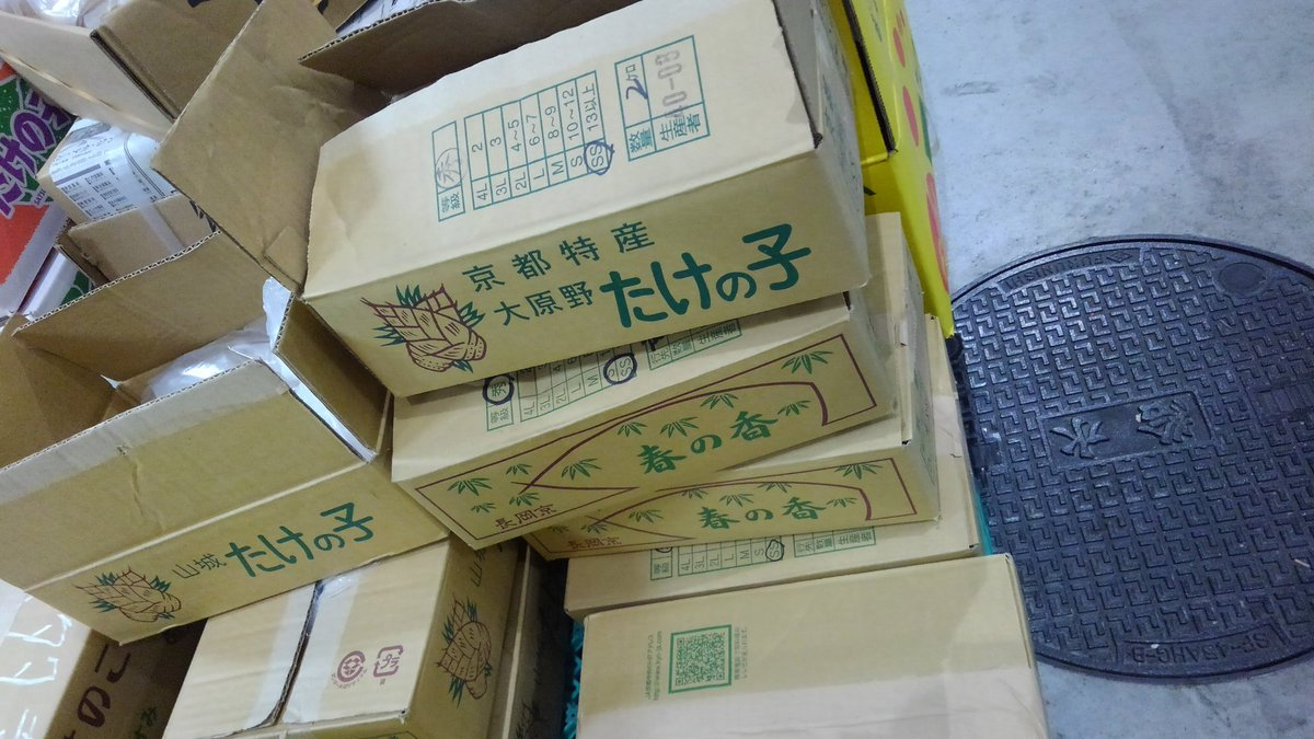 豊洲 タケノコ