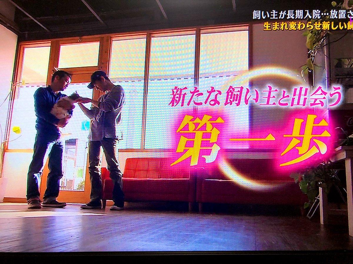 ちぃ💚's photo on #志村どうぶつ園
