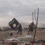 #Syrie l'#EI diffuse des photos des derniers combats dans le camp de #Baghouz // on remarque l'armement rudimentaire & au moins un enfant soldat