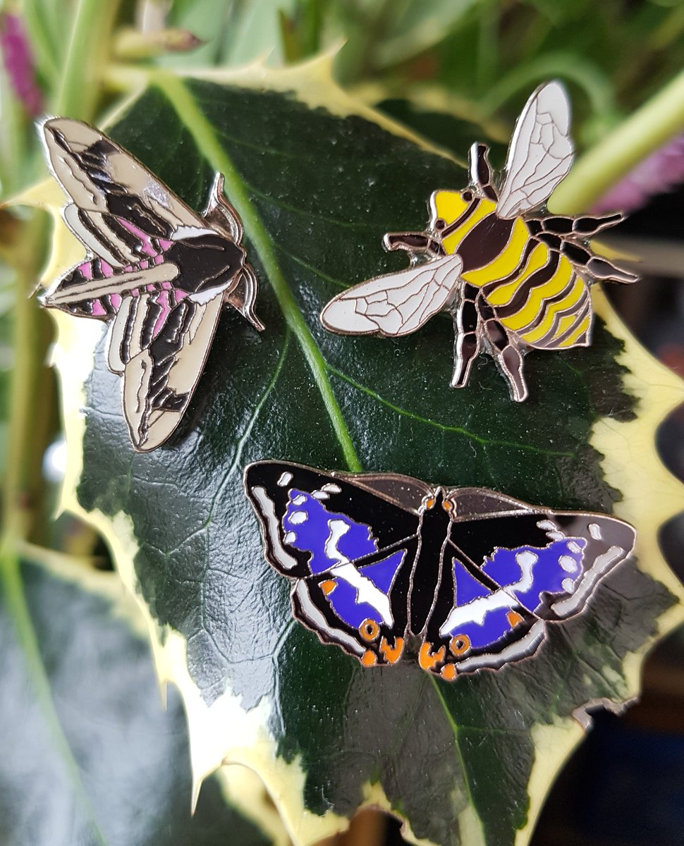 The new Privet Hawkmoth, Purple Emperor Butterfly & Great Yellow Bumblebee from #RSPBpins Coming to one of our charity collection boxes near you. Which is your favourite? #ShareHowYouWear #RSPB Do you collect? Show us your collection. @Natures_Voice @BenjyB00