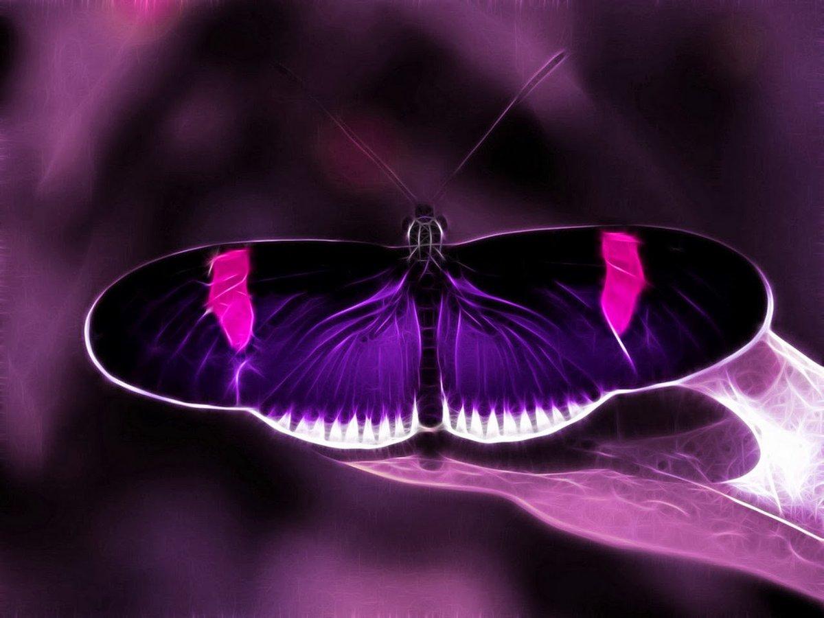 Картинки в фиолетово-черных тонах
