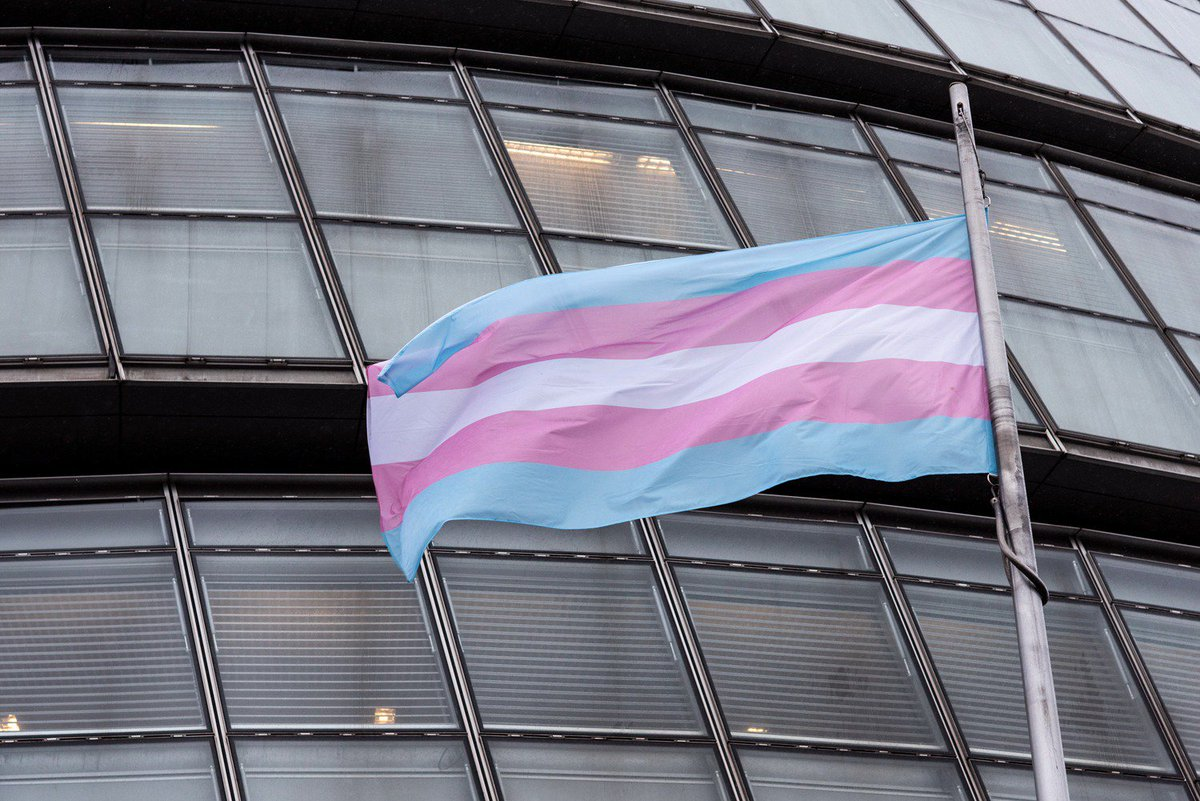 We're proud to mark #TransDayOfVisibility to celebrate the courage of trans people all over the world who face extraordinary challenges daily. We'll always do our utmost to ensure London remains welcoming and safe for trans people. #TDOV #TransVisibilityDay #TDOV2019 #TDOV19