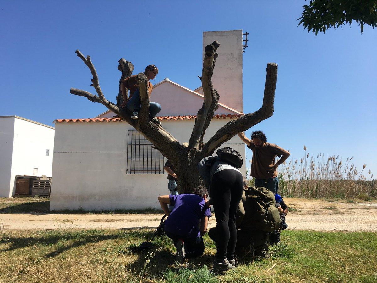 RT @FundacioAssut: Preparando el curso de rastros y huellas de fauna de este fin de semana que imparte Luisa Abenza. https://t.co/qIitICvi5k