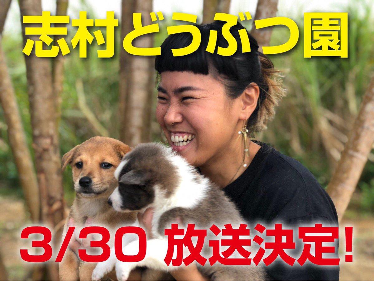動物園 沖縄 放送 志村