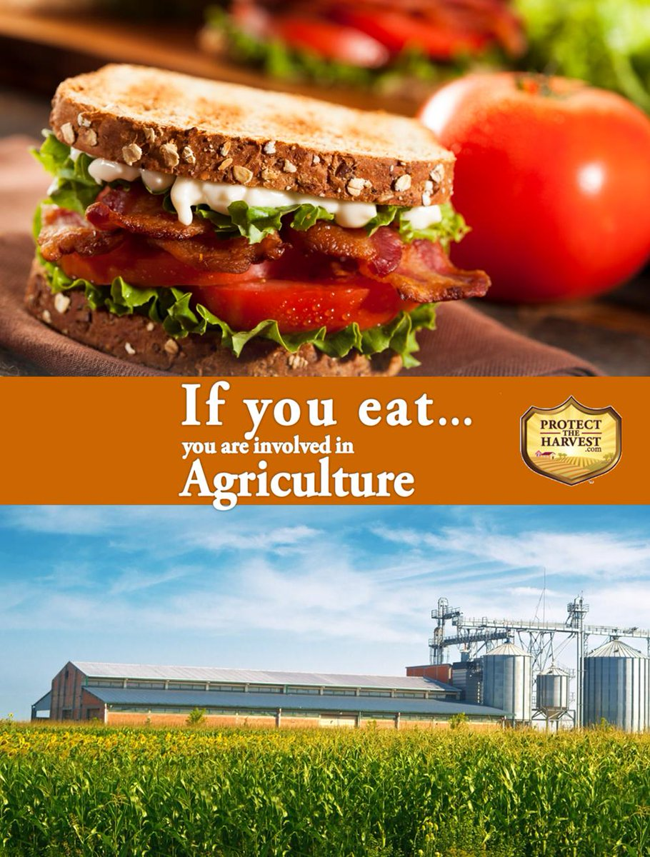 If you eat you're involved in #Agriculture. It's under attack by special interest groups. Protect our rights to produce #food. Learn more:  #feedtheworld #producefood #livestock #farm #ranch #thankafarmer #farmer #rancher #veggies #cook #family #groceries
