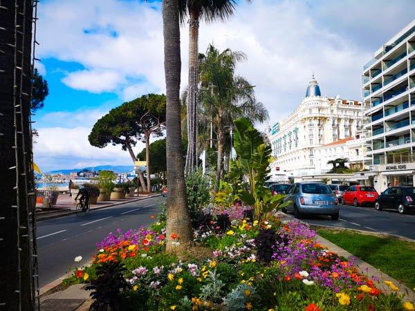 Chi ha voglia di un bel week end nell'elegante Cannes, in Costa Azzurra?  https://inviaggiodasola.com/week-end-a-cannes-in-primavera/…  #lemajesticcannes #francefr #barrieremoments