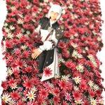 Image for the Tweet beginning: 花の中のマ・シャトラw #DoF写真部