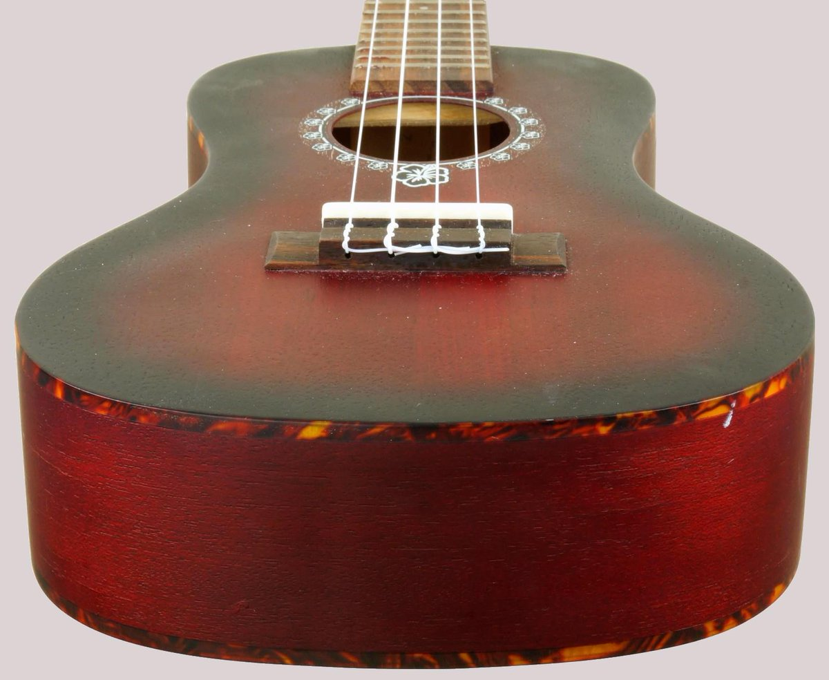puka rosette series ukulele concert