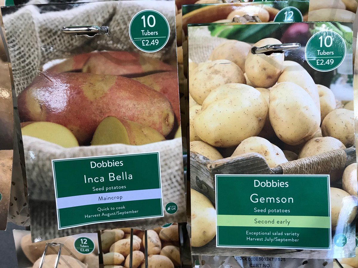 James Hutton bred potato varieties now on sale in Dobbies. Why not try planting some Gemson or Inca Bella?