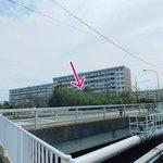 Image for the Tweet beginning: 金沢総合高校の向かいが公募販売されるもよう。ここに建物が出来るとなると、富岡駅から下ってきたときの印象が変わりそうです。  夏になると夾竹桃が咲くエリア。個人的には、あれが見られなくなるのはちょっと残念…。