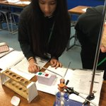 Image for the Tweet beginning: Year 11 investigating respiration rates